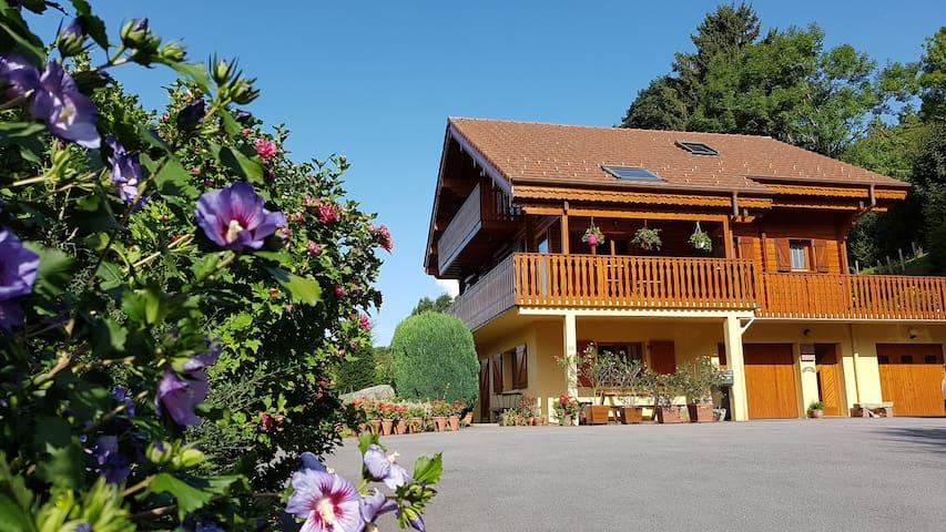 Charmant studio au cœur du massif des Vosges