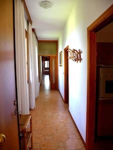 Appartamento con 4 stanze da letto,Sogliano centro - Sogliano Al Rubicone - Pis