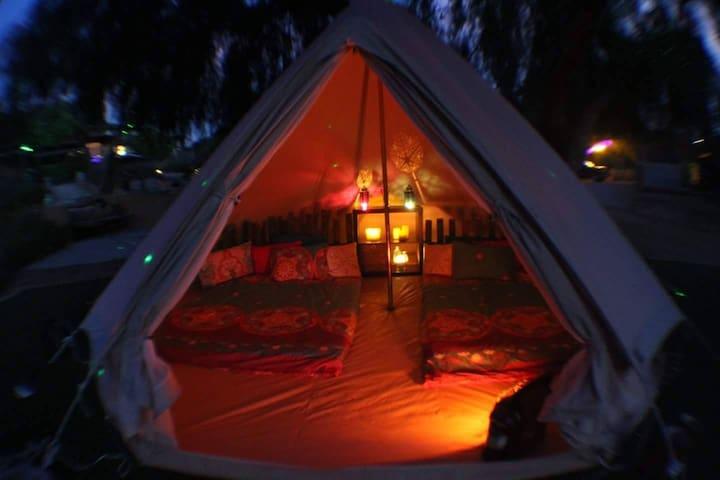 Royal Velvet Yurt at KCL Farm