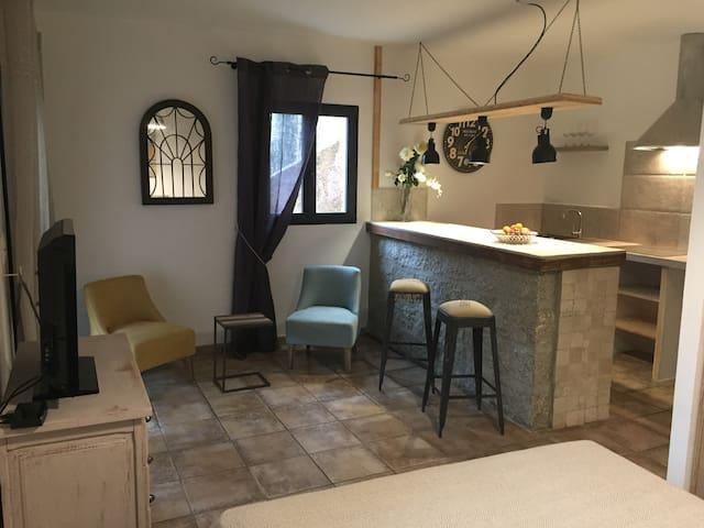 Rez de villa entièrement rénové en 2017 - Sartène - Apartamento