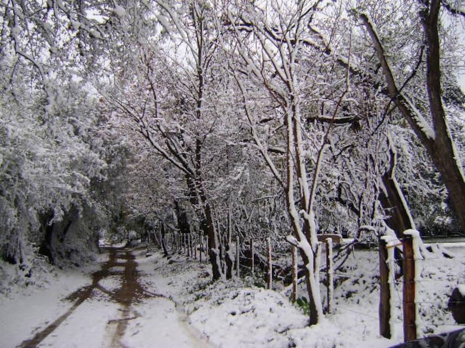 Calle nevada de acceso desde ruta 14