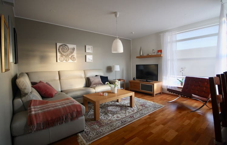 Beautiful apartment close to Reykjavik city center