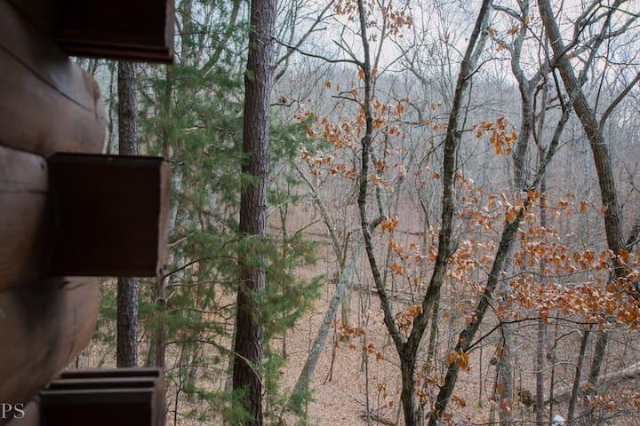 Cozy Cabin On Pine Mountain's Ridge
