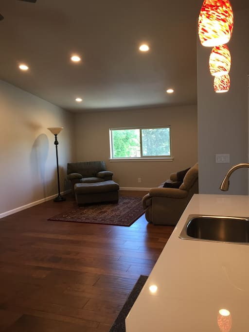 Kitchenette and living space