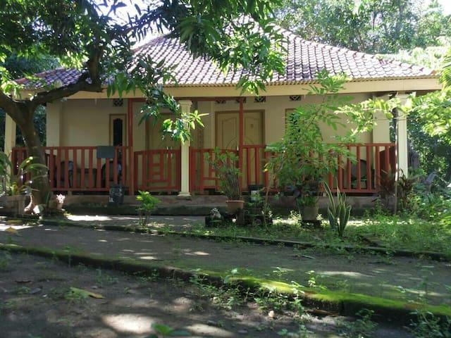 Pondok Gili Lampu Family room#9