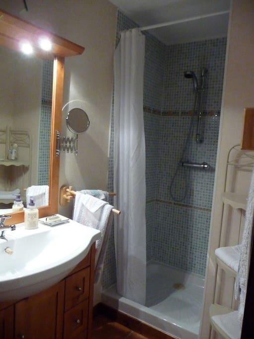 salle de bain  chambre n° 1