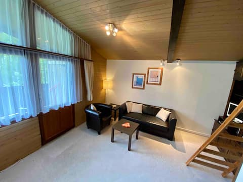 Appartment in Brunni-Alpthal with great scenery