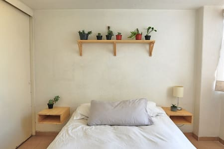 Sunny and comfy room with private bathroom - Benito Juárez - Apartment