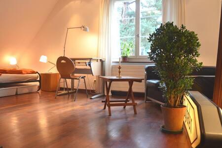 Lovely room in beautiful surroundings, peaceful. - Zürich - Talo