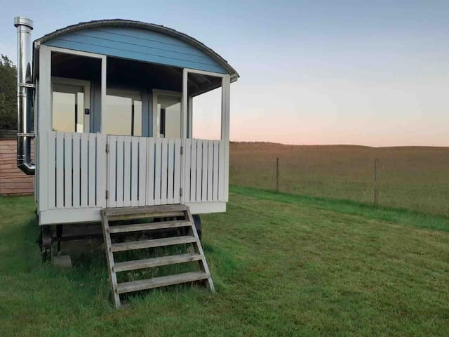 Shepherd Hut Glamping in North Wales