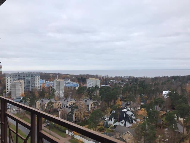 апартаменты в городе Сестрорецке
