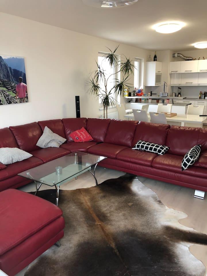 All new apartment/20 min. center/park. spot/wifi