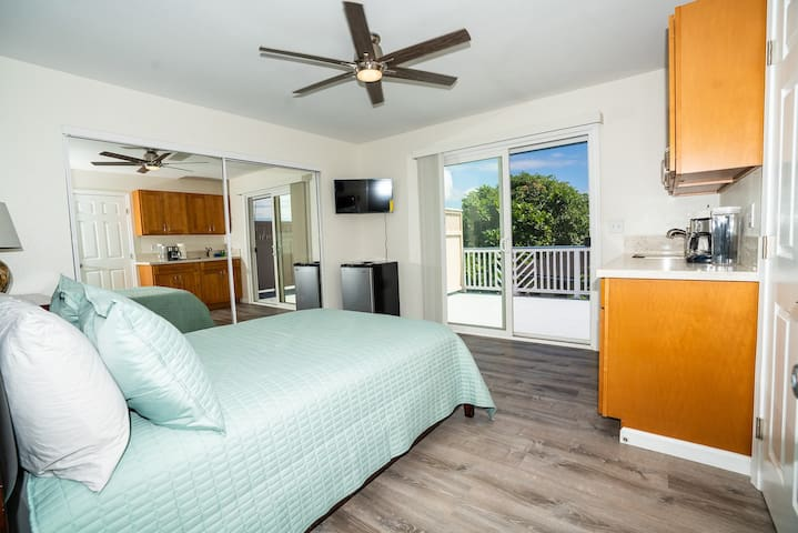 Room 5 with full size bed, AC, full wet-bar & private lanai.