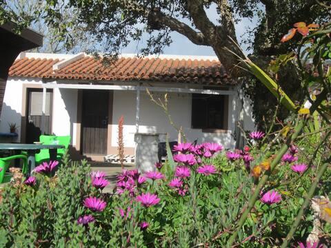 Casa de pedra flor de sol Sintra