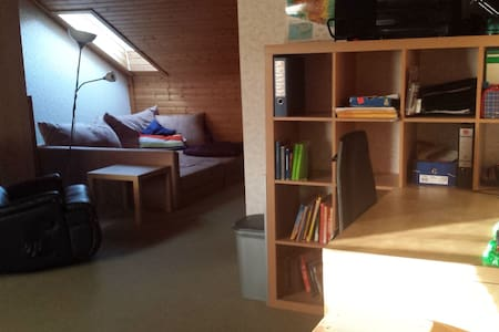 Großer Raum für gemütliche Stunden - Veitshöchheim - Rumah bandar