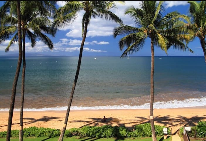 APARTMENT 1BD 1BA w/ full kitchen - Kihei - Hus