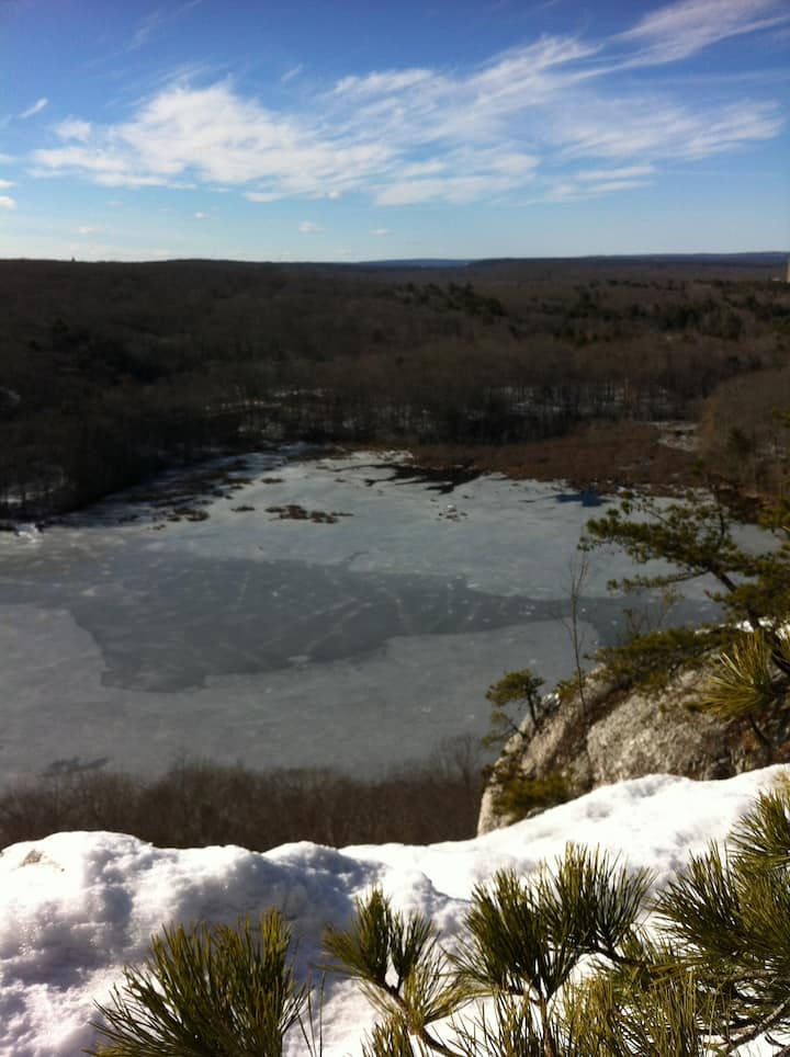 The view over Lantern Hill Pond - Winter