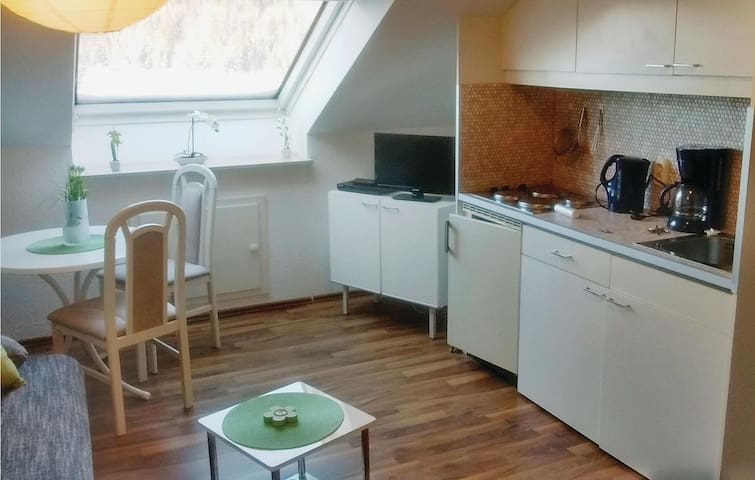 Holiday apartment with 1 room on 20m² in Altenau