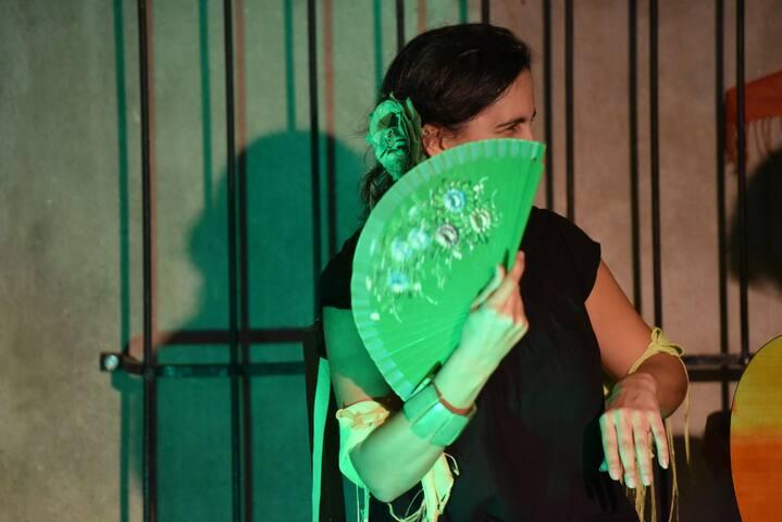 Casa El Patio Andalú: FLAMENCO show/dinner+B&B