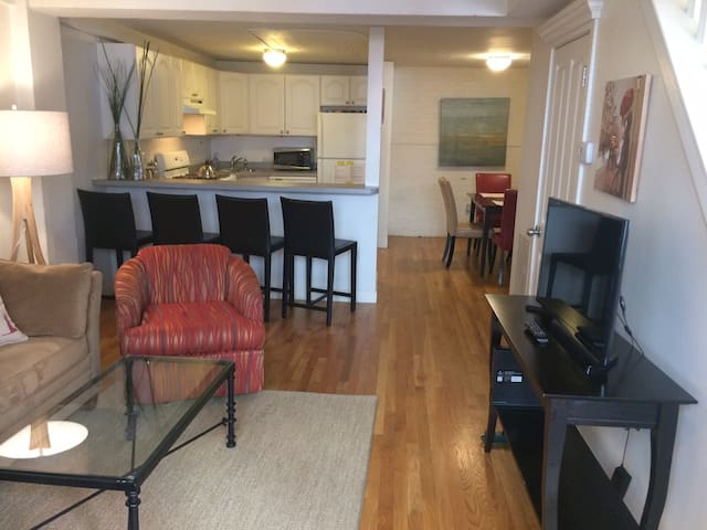 Deluxe 2 BR, Private Entrance, excellent location! - Boston