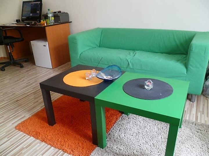 Comfy studio in prague
