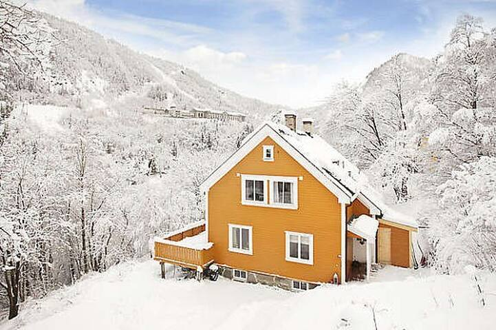 Lipton Lodge Rjukan (Room 2)