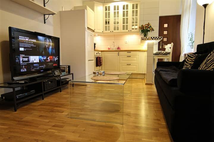 Concept Apartment, Very central, Wii U, Netflix