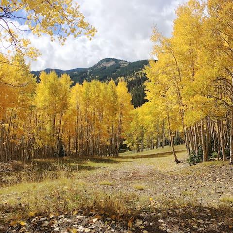 Ultimate Fall Season Getaway