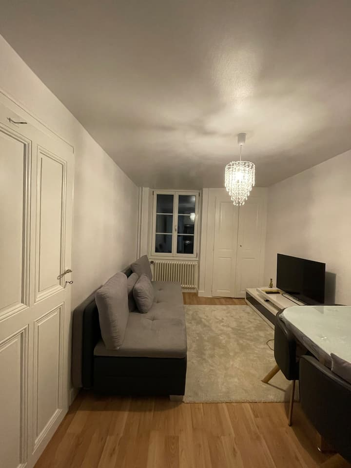 Beautiful refurbished 2Br next to the UN, WTO area