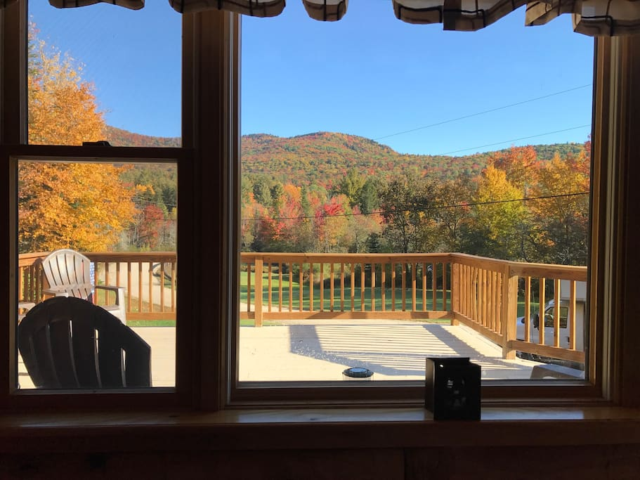 Looking at the fall colors from our dining area