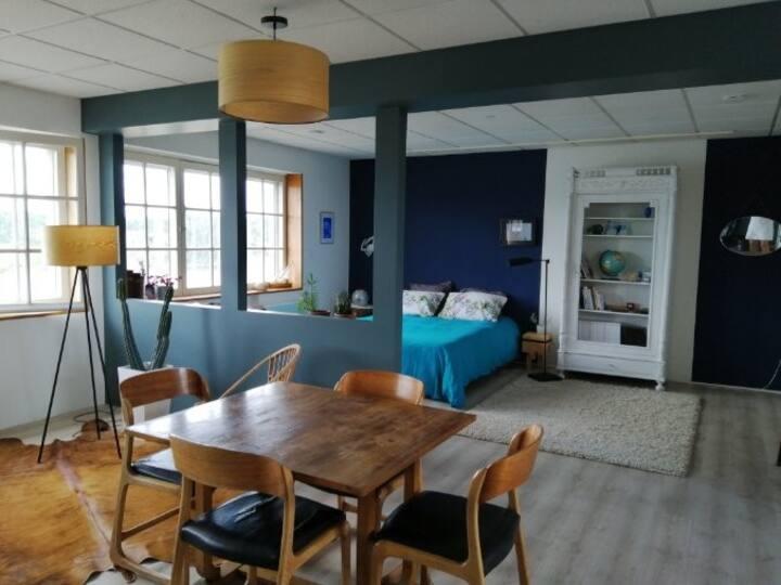 Appartement style loft, vue Loire