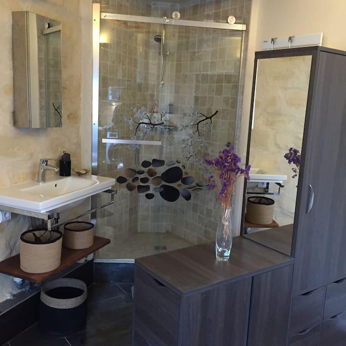 Shower, bathroom sink, medicine cabinet above sink, closet