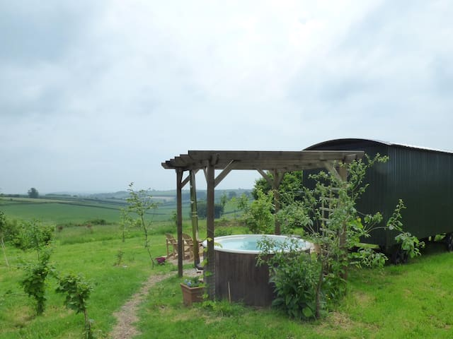 Forager shepherd's hutw- hot tub, ensuite & views