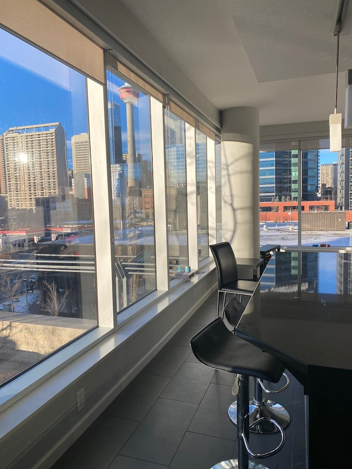 Luxurious 2 Bedroom Downtown Condo