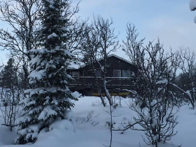 Hytte på Geilo, Sangefjell - Ål kommune - Kabin