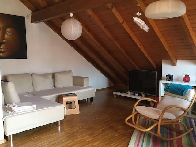 Spacious Maisonette near Euroairport + Messe Basel - Allschwil - Apartment