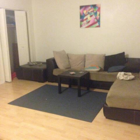 Cozy Hyde Park Bedrooms CLOSE TO UT CAMPUS - Austin - Appartamento