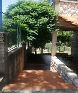 Em salim traditional village house