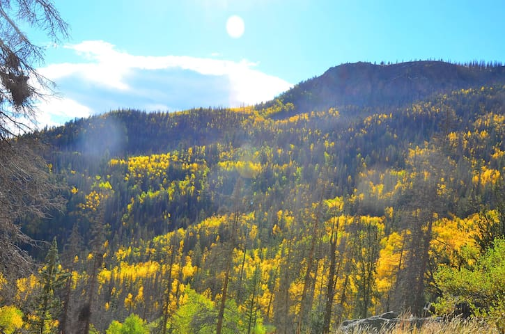 Shimmering Aspen Airstream in Creede