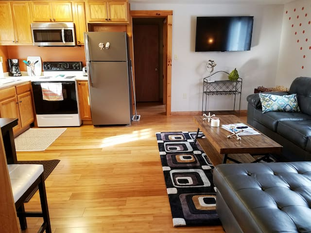 Newly Renovated Cozy 2 Bedroom Apt - Pittsfield - Lakás