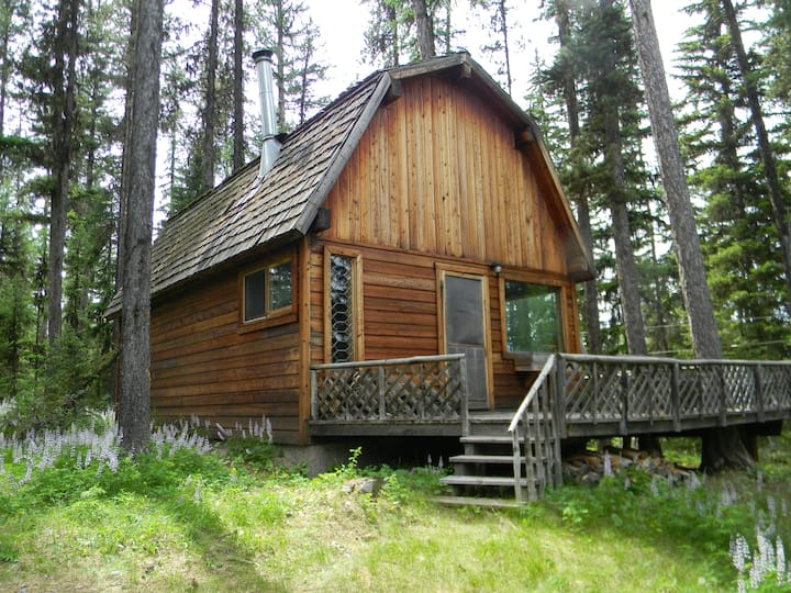 """""""Deer Leap"""" cozy cabin nestled in the pines."""