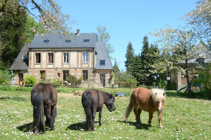 3 ponettes et une maison - Étoutteville - Dům