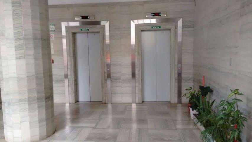 2 elevadores sociais e 1 de serviço. Área para bicicletas e reuniões do condomínio.
