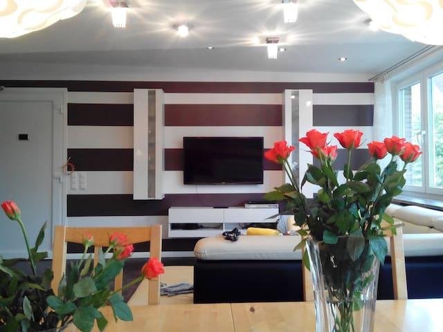 NEU: Grosse Luxuswohnung mittendrin in der Stadt! - Hamburg - Casa