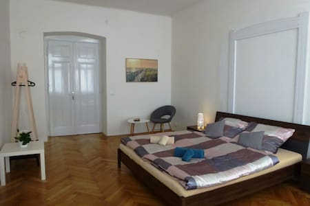 Chic and Lovely Flat in the Very Heart of Pilsen - Pilsen