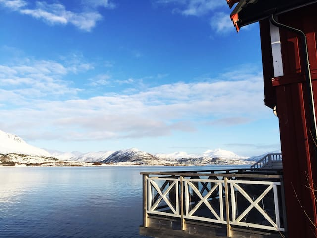 Idyllic sea cabin at Rinøya.-Close to Lofoten.
