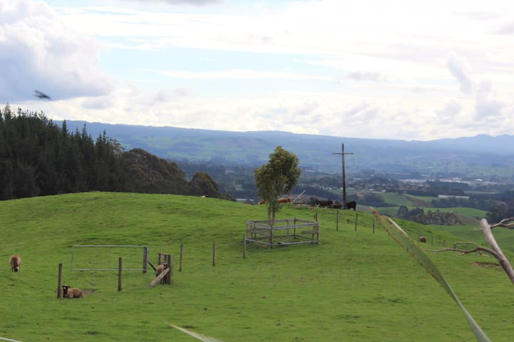 Looking west toward the black sheep and Highland cattle.