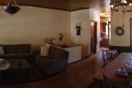 Παραδοσιακό Σπίτι - Pertouli
