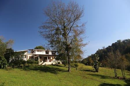 Casa en  bosque  30 min de Xalapa - Xalapa