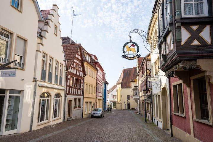 Wohnung im Herzen der Altstadt Gundelsheim